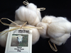 Texal White Undyed Carded Wool 50g