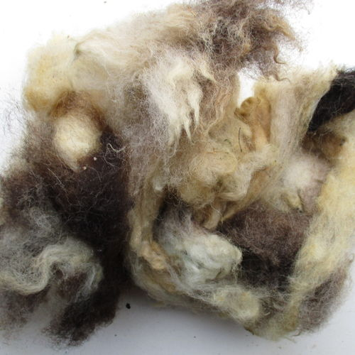 Jacob Mixed Raw (Unwashed) Fleece 200g