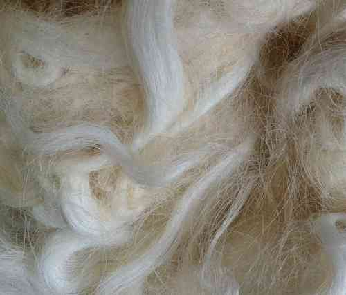 Devon & Cornwall Longwool Lamb Loose Fleece White undyed 50g