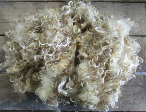 Wensleydale Loose Raw (unwashed) Fleece 200g