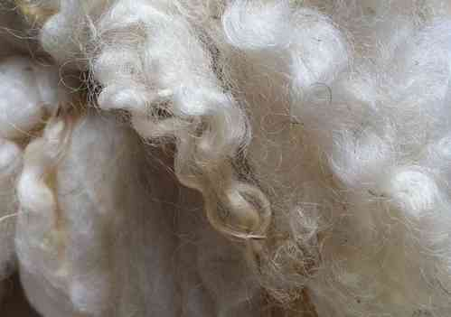 Suffolk Washed Fleece 200g