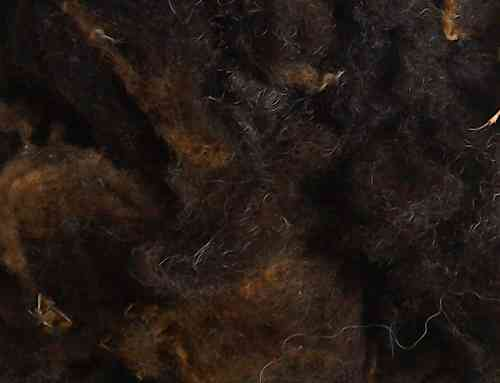 Black Undyed Zwartbles Washed Wool 200g