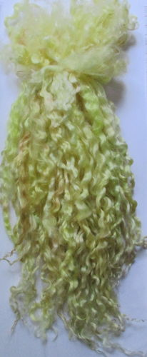 Teeswater Extra Long Locks in Sandy Beach for Doll Making 1 oz (28.4g)