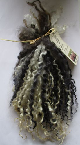 Teeswater Locks in Evening Grey for Doll making 1 oz