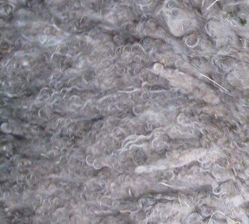 Ethical Mohair Fleece Raw Unwashed 200g