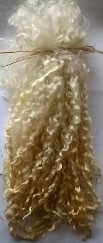 Teeswater Extra Long Locks in Ivory for Doll Making 2 oz (56.8g)