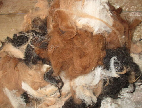 Alpaca Raw (Unwashed)  Fleece Mixed Colours 200g