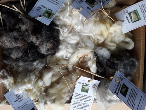 Washed Fleece Selection Box 6 X 100g