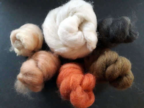 Animal Tones Felting Starter Pack