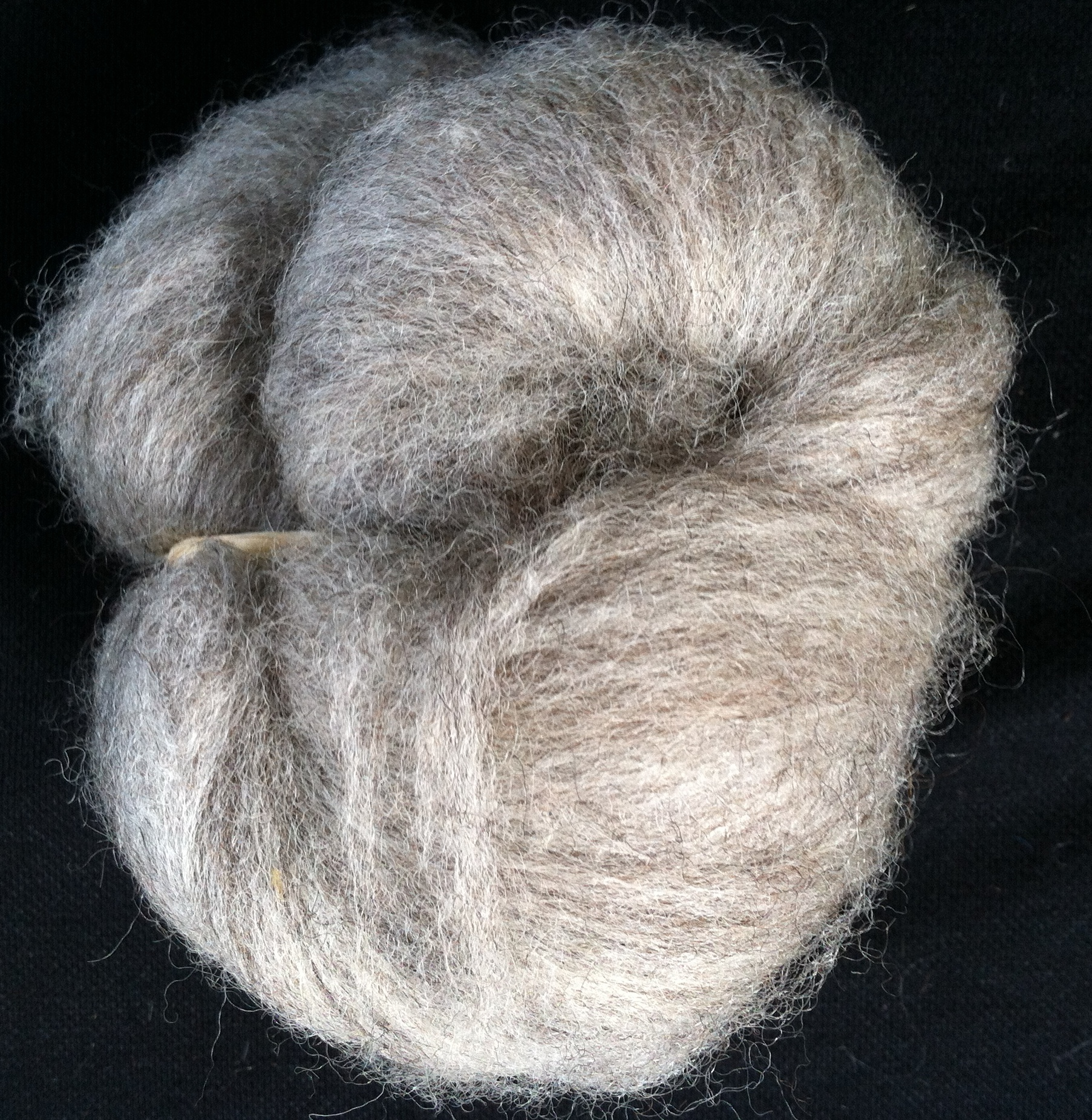 Blue_Faced_Leicester_Wool_Top