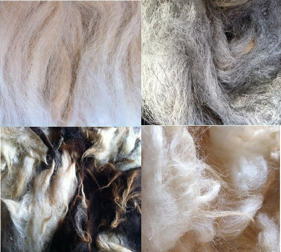 washed_wool_collection